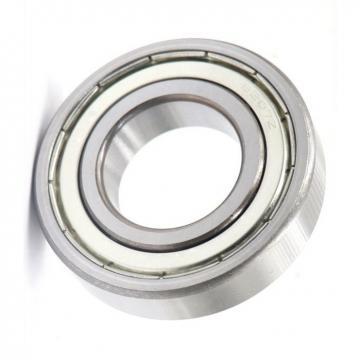 6805 6806 6807 6808 Zz 2RS Motor Ball Bearing